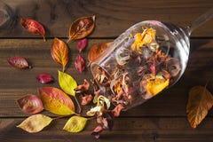 Folhas de outono em um vidro de vinho no fundo de madeira da tabela Imagens de Stock
