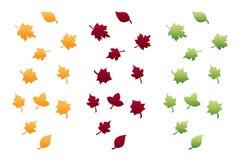 Folhas de outono isoladas no branco Fotos de Stock