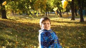 Folhas de outono de jogo do menino feliz no parque ensolarado vídeos de arquivo