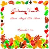 Folhas de outono na forma do quadro Fotografia de Stock Royalty Free
