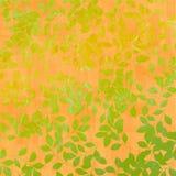 Folhas de outono no fundo alaranjado Fotografia de Stock Royalty Free