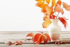 Folhas de outono no vaso imagens de stock royalty free