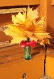 Folhas de outono no vaso azul Fotografia de Stock Royalty Free