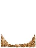Folhas de outono que formam uma beira da página em um fundo branco Imagens de Stock Royalty Free