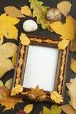 Folhas de outono sobre o fundo de madeira com espaço da cópia Recordando novembro Decoração das folhas secas das árvores Imagem de Stock Royalty Free