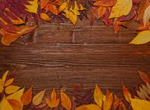 Folhas de outono sobre o fundo de madeira do vintage velho Imagem de Stock Royalty Free