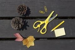 Folhas de outono, tesouras, lápis, clipes de papel em um fundo de madeira, conceito da escola foto de stock