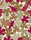 Folhas de outono - teste padrão sem emenda do vetor Imagens de Stock