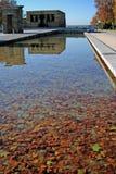 Folhas de outono uma reflexão Fotografia de Stock Royalty Free