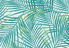 Folhas de palmeira. ilustração stock