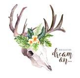 Folhas de palmeira boêmias do crânio e do trópico da vaca da aquarela Mamíferos ocidentais dos cervos Chifres tropicais da cópia  Fotografia de Stock Royalty Free