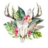 Folhas de palmeira boêmias do crânio e do trópico da vaca da aquarela Mamíferos ocidentais dos cervos Chifres tropicais da cópia  ilustração stock