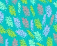 Folhas de palmeira do fundo Foto de Stock