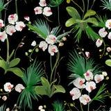 Folhas de palmeira e fundo tropicais das flores da orquídea Teste padrão sem emenda Fotos de Stock