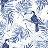 Folhas de palmeira e tucano Teste padrão sem emenda 1 da aquarela Fotos de Stock Royalty Free