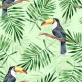 Folhas de palmeira e tucano Teste padrão sem emenda da aquarela Foto de Stock Royalty Free