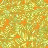 Folhas de palmeira Fundo sem emenda do vetor floral Foto de Stock Royalty Free