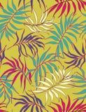 Folhas de palmeira - teste padrão sem emenda Foto de Stock