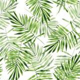 Folhas de palmeira Teste padrão sem emenda 2 da aquarela Foto de Stock Royalty Free