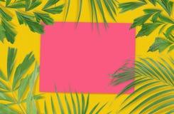Folhas de palmeira tropicais com papel vazio para seu projeto no amarelo Imagem de Stock Royalty Free