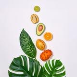 Folhas de palmeira tropicais e frutos frescos Grupo do verão imagens de stock royalty free