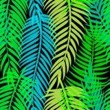 Folhas de palmeira tropicais exóticas Teste padrão abstrato sem emenda do vetor Fotografia de Stock Royalty Free