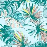 Folhas de palmeira tropicais tiradas da tinta do teste padrão mão sem emenda Ilustração do vetor Fotografia de Stock Royalty Free