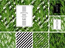 Folhas de palmeira tropicais Vetor sem emenda Fotografia de Stock Royalty Free