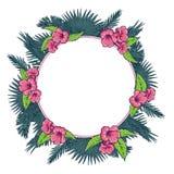 Folhas de Palmtree e grinalda cor-de-rosa das flores do trumpetbush Fotos de Stock