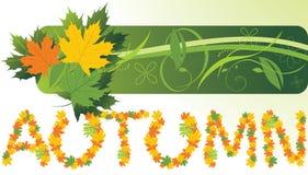 Folhas de plátano. Bandeira abstrata do outono Imagem de Stock