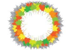 Folhas de plátano em um círculo Foto de Stock Royalty Free