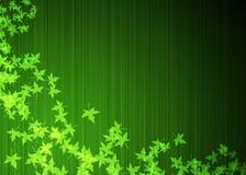 Folhas de plátano verdes Foto de Stock