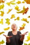 Folhas de plátano do vôo Imagem de Stock Royalty Free
