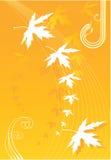 Folhas de queda ilustração do vetor