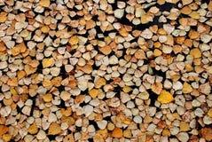 Folhas de queda Foto de Stock