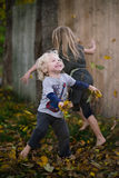 Folhas de queda Foto de Stock Royalty Free