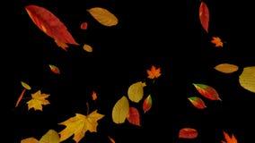 Folhas de queda do amarelo do outono perto acima ilustração royalty free