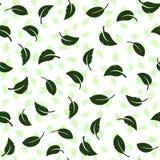 Folhas de queda em um fundo verde Teste padrão sem emenda ilustração do vetor
