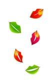Folhas de queda na forma dos bordos Imagens de Stock Royalty Free