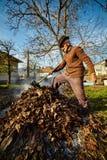 Folhas de queimadura dos mortos do fazendeiro idoso Fotos de Stock