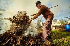 Folhas de queimadura dos mortos do fazendeiro idoso Imagem de Stock