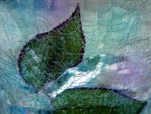 Folhas de Rosa sob o gelo imagens de stock