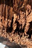 Folhas de secagem do tabaco Fotos de Stock Royalty Free