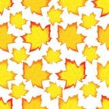 Folhas de um bordo ilustração royalty free