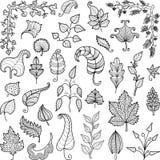 Folhas decorativas Foto de Stock