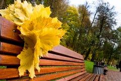 Folhas do amarelo em um banco vermelho Fotografia de Stock