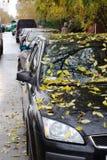 Folhas do amarelo no carro Fotos de Stock Royalty Free