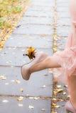 Folhas do amarelo no salto Foto de Stock