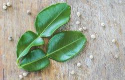 Folhas do cal da pimenta e do kaffir Imagens de Stock Royalty Free