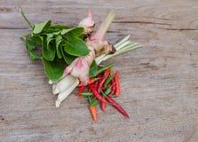 Folhas do cal do Kaffir e outras especiarias Foto de Stock